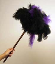 feather-duster